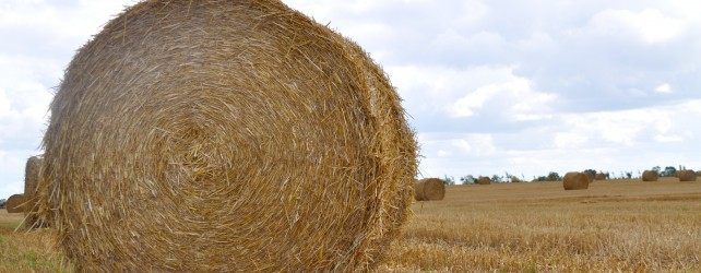Ohio Use Tax – Preparing to Make Hay While the Sun Shines Results in Exemption of Farm Equipment